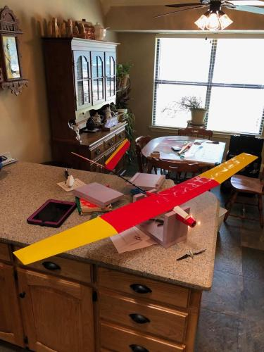 Richard built another model from Dancing Wings